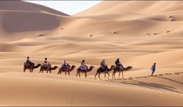 rceni - El Sahara -de- bosque- pasó -a -convertirse- en- un -desierto-