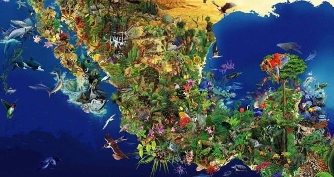 rceni-biodiversidad-biologia