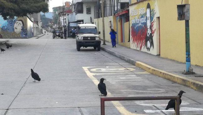 rceni - Centros de Votación vacíos en Venezuela- 20 -de-mayo