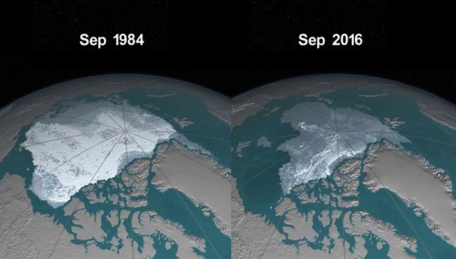 """La nueva """"víctima"""" del calentamiento global"""