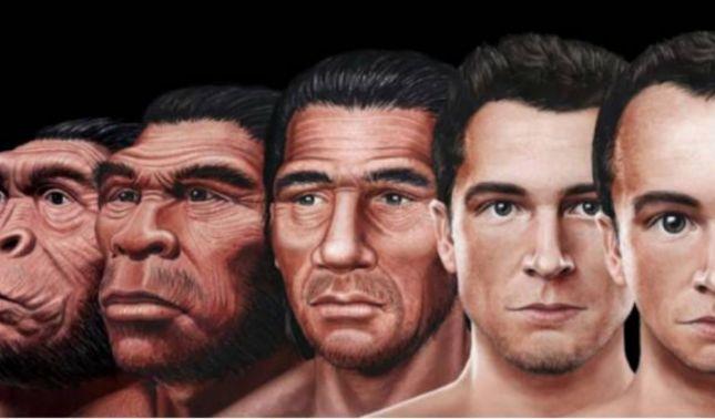 rceni- nuestro rostro en el futuro -con -la -evolución -asi-se-vera-