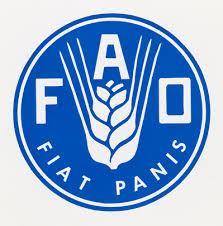 FAO y Centroamérica se unen para reforzar lucha contra la pobreza