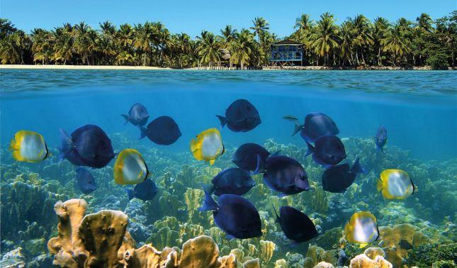 rceni - Lonely Planet incluye a Panamá -entre -los -10 -destinos -para- viajar- en- 2019-