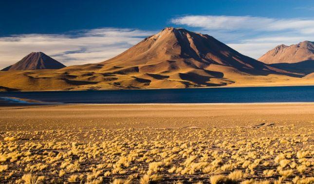 rceni - Atacama -500- años- sin -llover- y -el -agua- que -cayó- acaba- con- la -vida -