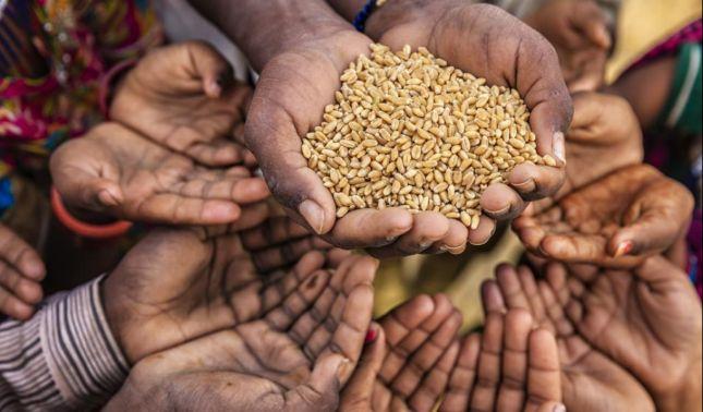 rceni - Crece el hambre -y -la -obesidad -sube -sin- control- en -Latinoamérica-Informe-fao-