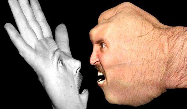 rceni - Comportamiento agresivo- en -adolecentes- identifican- el- gen- que -lo -provoca -