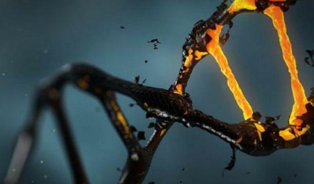 rceni - Metástasis -Científicos- hallan -una- droga- que -impide- su -formación-