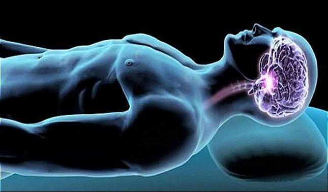rceni - Podemos aprender mientras dormimos -cientificos -asi -lo -demuestran -