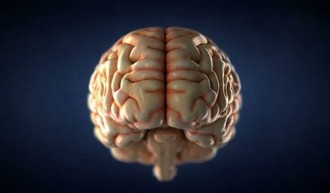 rceni - Principal causa del Alzhéimer - no- es -lo -que -se -creía- hasta- ahora-
