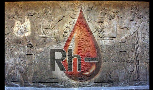 rceni - Rh negativo - teoria- afirma- que- esa -sangre -es- de -origen -extraterrestre-