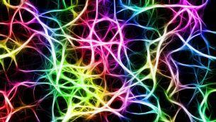 Crean un chip que imita el cerebro humano y 'razona' a la velocidad de la luz