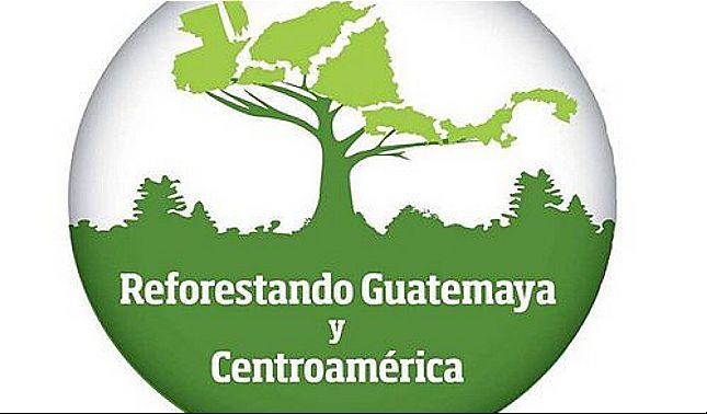 rceni - Reforestando Guatemaya y -Centroamérica -sembrará- 6- millones- de -árboles-