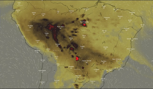 rceni - Apagar el Amazonas -posibles- consecuencias- de -los- incendios- infografia
