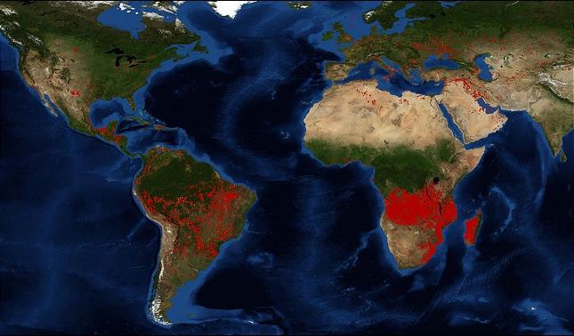 rceni - Arde África -hay -mas -incendios -que- en -la -Amazonia-