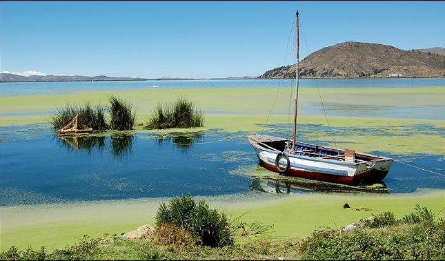 rceni - Lago Titicaca -cuna -del-imperio -Inca -atraviesa- una -muerte -lenta -y -silenciosa-