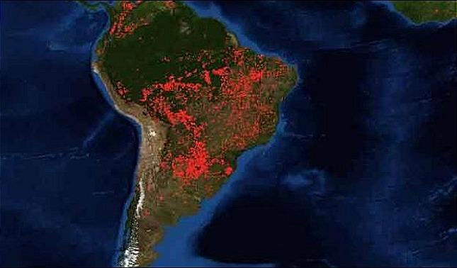 rceni - Pacto de Leticia - 7- paises -de-suramerica-se -comprometen- a -proteger -la- Amazonia-