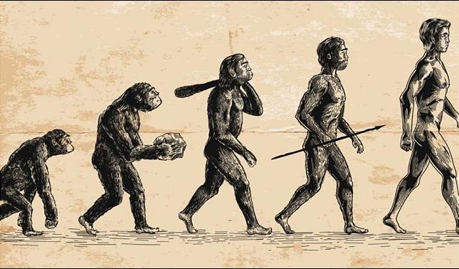 rceni - Origen de la humanidad -un- estudio- logra -conseguir -el -lugar- preciso-