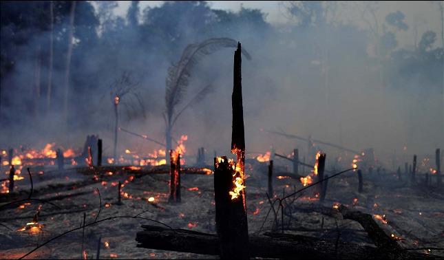 rceni - Los incendios - en- la- amazonia -derriten -los -glaciares- andinos-