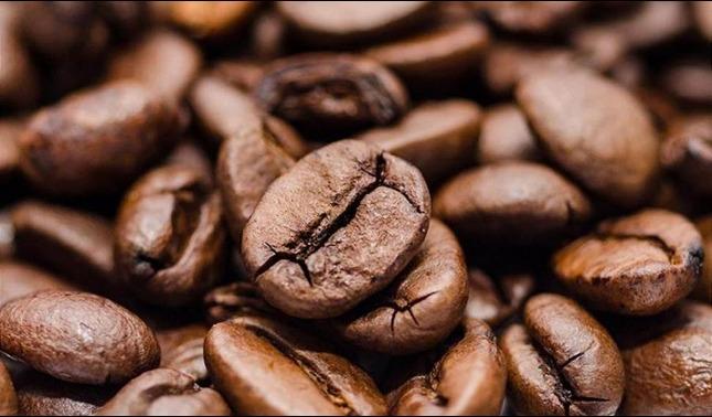 rceni - Roya del café -crean -programa- de- apoyo- a -cafetaleros- en -Centroamérica-