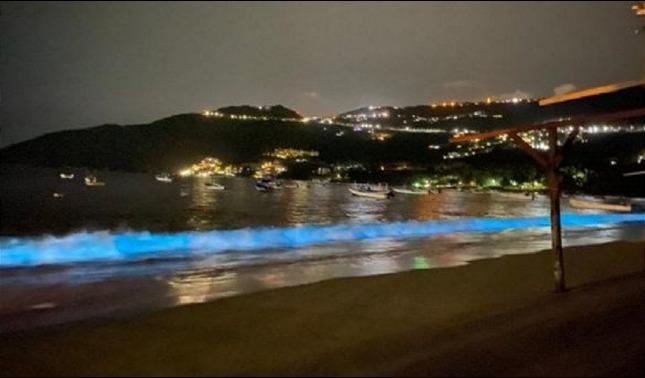 rceni - Bioluminiscencia- hace- brillar- las -playas- de -Acapulco- en -Mexico-