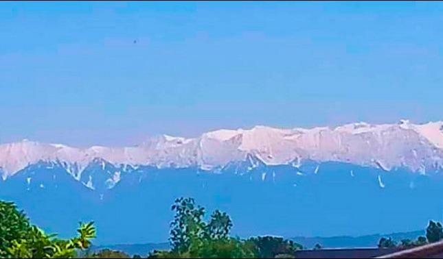 rceni - Himalaya - reaparece -en- la- India- tras- varias -décadas- por- la- cuarentena-