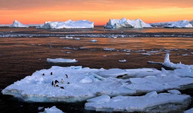 rceni - Microplásticos en la antártida -son -conseguidos- en- nucleo- del -hielo-