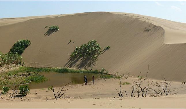 rceni - médanos de coro - un -pequeño -desierto -del- Sahara- en -Venezuela-