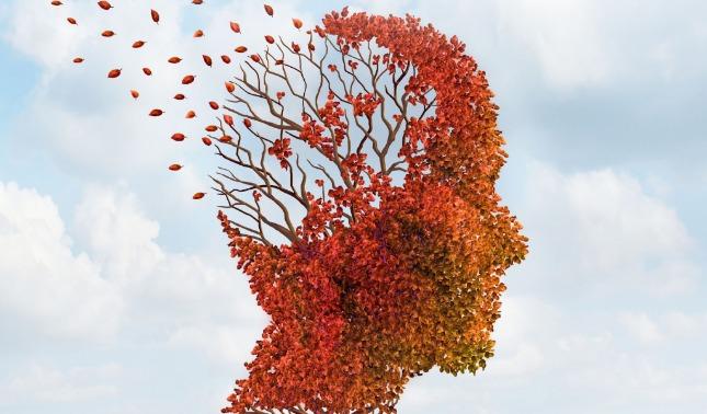 rceni - enfermedad de alzheimer - con- analisis- de -sangre- crean- prueba- muy- eficaz- - enfermedad de alzheimer - con- analisis- de -sangre- crean- prueba- muy- eficaz-