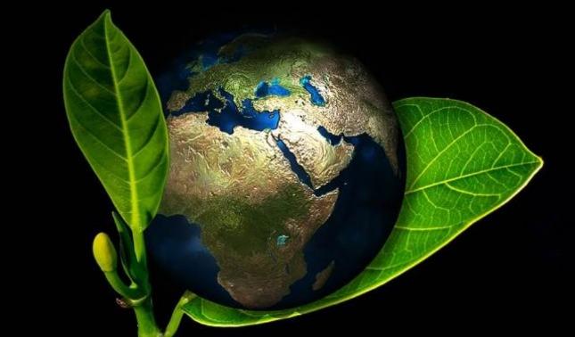rceni - Biotecnología -Costa -Rica -exporta- talento- de- profesionales -a -18 -países-