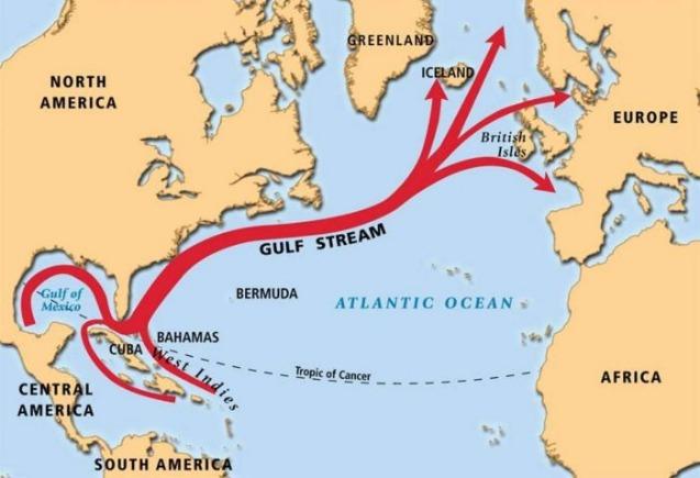 rceni - Anomalía -sorprendente- ha- sido- detectada- en- la- Corriente -del -Golfo-