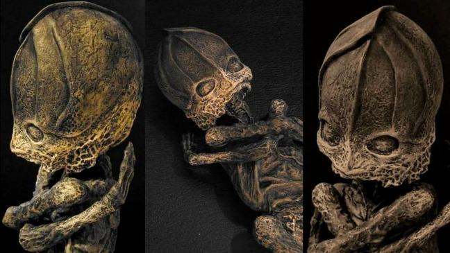 rceni - Alyoshenka - la- extraña- criatura -el- extraterrestre- ser- de- Kyshtym- Video-