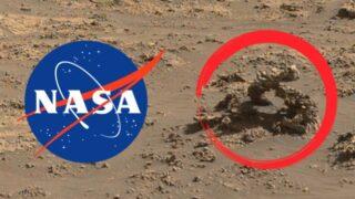 rceni - El rover Curiosity - de -nasa- encuentra -signos- de- vida -microbiana- en -marte-