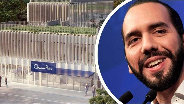 rceni - Hospital veterinario -construirá- en- El- Salvador -con -ganancias -de -bitcoin-